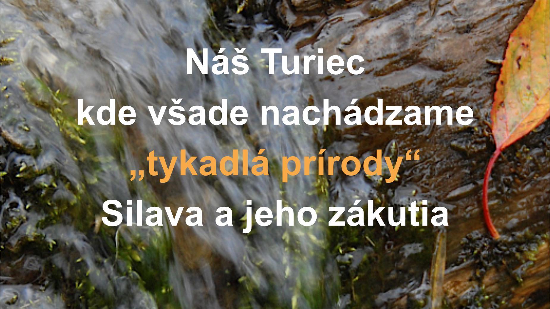 """Náš Turiec – Kde všade nachádzame """"tykadlá prírody"""" – Silava a jeho zákutia"""