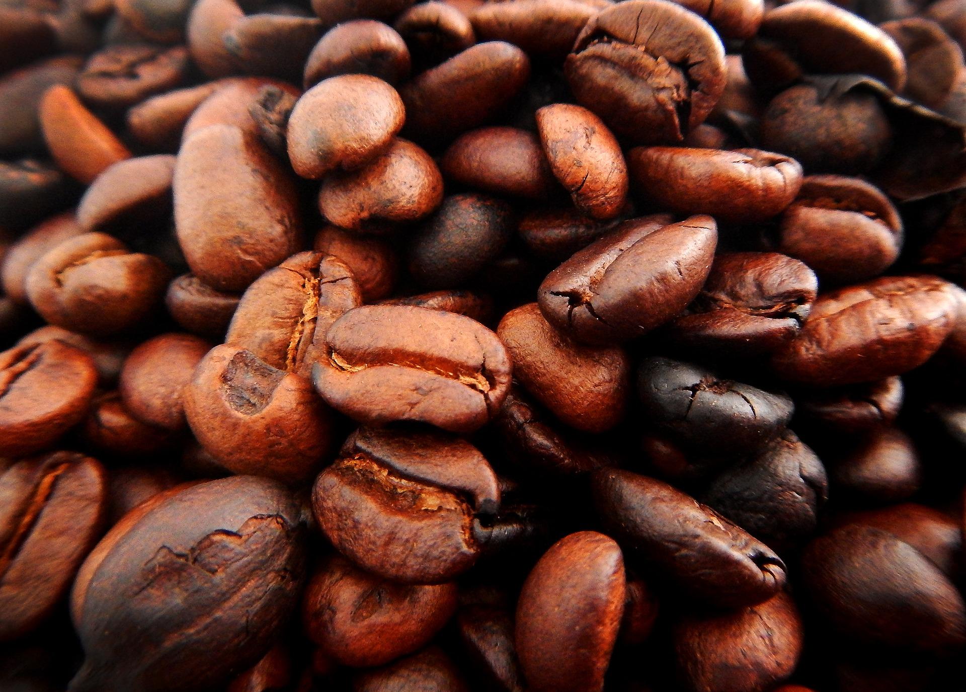 Detská tvorivá dielnička – Tvoríme zo zrniek kávy